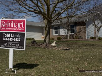 Residential home listing in the City of Saline